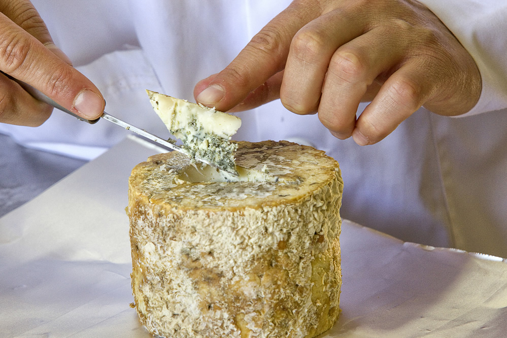 Gamonéu cheese