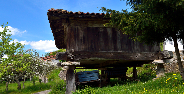 A raised granary with a yew tree in Robledo de Anayo (Piloña)